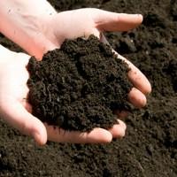 Почва, грунты и земля